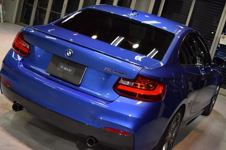 BMW10 DSC_1279.jpg.jpg